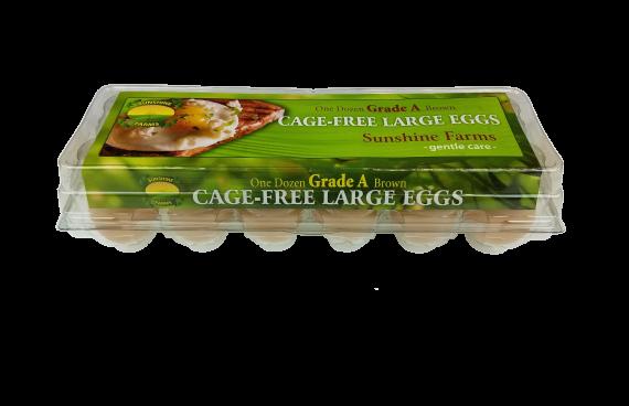 Sunshine Farms Cage Free Large Dozen
